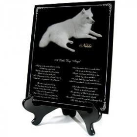 Engraved Pet Memorials